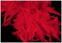 Boa - krůtí peří - červené
