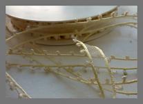 Stuha  krémová monofilová s nopky - 30mm/1m