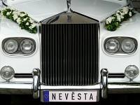Svatební SPZ - nevěsta