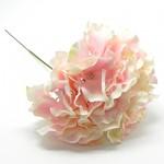 Hortenzie - stvol - pastelově růžová