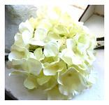 Vazbový květ hortenzie - krémový