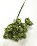 Jeřabina glitr - zelená trs