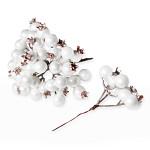Jeřabina glitr - bílá trs
