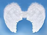 Andělská křídla - bílá - 80x 60 cm - maxi