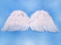 Andělská křídla - bílá - 75 x 30 cm