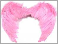 Andělská křídla - růžová - 35x50 cm
