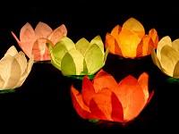 Vodní lampiony - lotosový květ  - mix barev