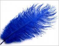 Pštrosí péro - tm.modré