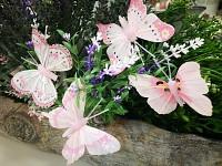 Motýl jarní - růžový mix - 1 ks