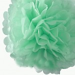 Pompon - koule mátová - 25cm