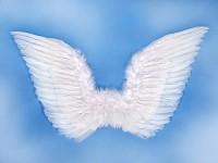 Andělská křídla - bílá - 75x 45 cm