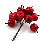 Jablíčka červená lesklá drátku - 8 ks