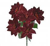 Vánoční hvězda - kytice