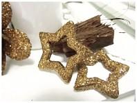 Hvězda dutá - champagne glitter