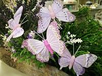 Motýl jarní - fialový mix - 1 ks