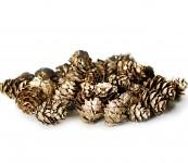 Šišky malé sv.zlaté - 50 g