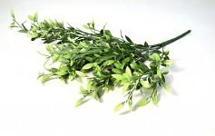 Eukalyptus mini - šedý