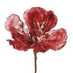 Květ magnolie - červený