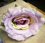 Hlavičky poupat růží - fialovo-zelené