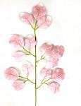 Stonek růže - zelený - základ jednoduchý