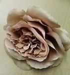 Hlavičky růží Mary Rose - nafialovělé