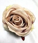 Hlavičky poupat růží - sv.kávové