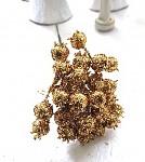 Jeřabina glitr - zlatá trs