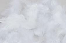 Peříčka - brka bílá 100ks