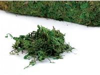 Dekorační mech zelený - 100 g