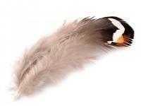 Bažantí peří - mini