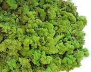Dekorační islandský mech - zelený 50 g