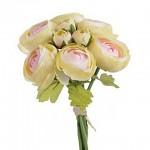 Ranunculus svazek - krém s růžovým středem