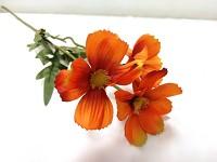 Cosmos zápich - 3 květy - oranžový