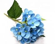 Hortenzie stvol - modrofialová
