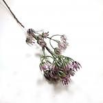 Spider glitter - zápich - tm.fialový