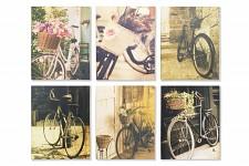 Obraz pro cyklisty - kolo s květinami