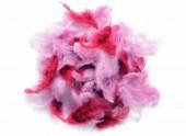Peříčka barevná - růžovo-malinovo-fialový mix