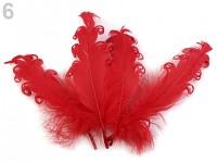 Husí peří kudrnaté 1ks - červené
