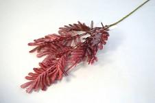 Kapradí zápich podzimní - vínové