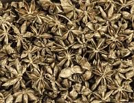 Badyán zlatý - 20 g