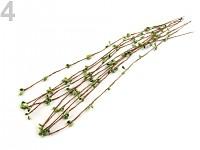 Větvička s pupeny - zelená 1ks