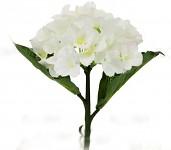 Hortenzie stvol mini - bílá - 32 cm