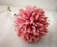 Allium - starorůžový květ