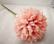 Allium - sv.růžový květ