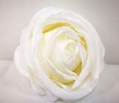 Hlavička pivoňkové růže - bílá