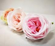 Hlavička pivoňkové růže - baby růžová