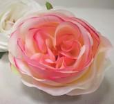Hlavička pivoňkové růže - krémovo-růžová