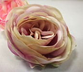 Hlavička pivoňkové růže - nafialovělá