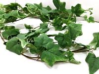 Zelená girlanda břečťan velkolistý - 160 cm