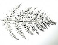 List kapradí - stříbrný glitter - 1 ks